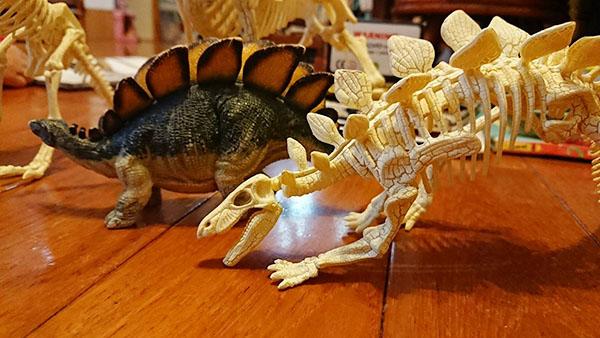非常超值的恐龍骨頭